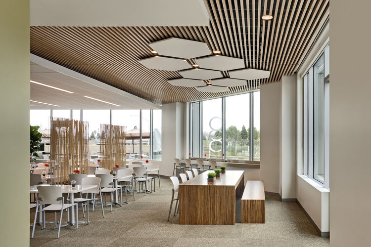 The natural materials used throughout the building, seen here in the cafeteria, are meant to reflect nearby Mt. Diablo.