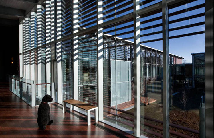 """World Headquarters for the International Fund for Animal Welfare (interior view) in Yarmouthport, Massachusetts, by <a href=""""http://www.designlabarch.com"""">designLAB Architects</a>. Photo by Peter Vanderwarker."""