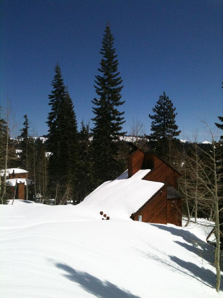 Cabin in Bear Valley.