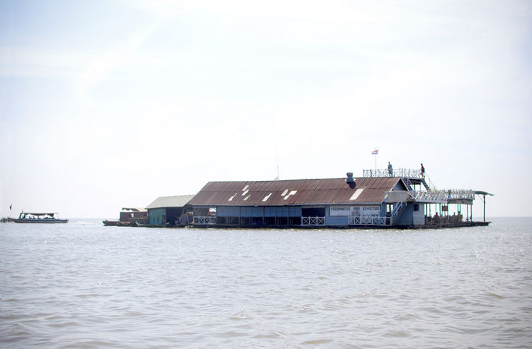 This is the 'Freshwater Fish Exhibition' - a fish farm and a large gathering hall. All floating villages on the Tonle Sap lake depend on fishing to survive. The Tonle Sap is the largest inland body of water in Southeast Asia and is a true nutritional boun