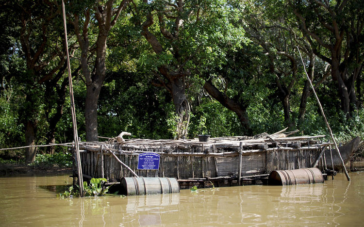 This is one of the many floating fish farms that you can see scattered throughout the village, tethered to the trees or a fisherman's home.