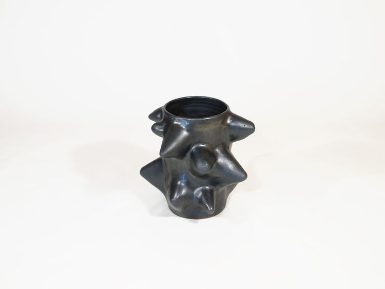 "One of the pieces from Warner Walcott's stoneware ""thorn series,"" this vase is $1100."