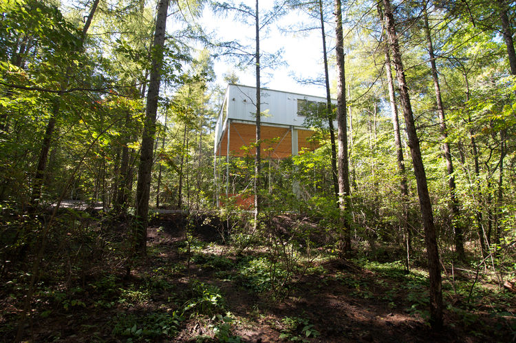 Go Hasegawa's design gently communicates with the surrounding dense forest.
