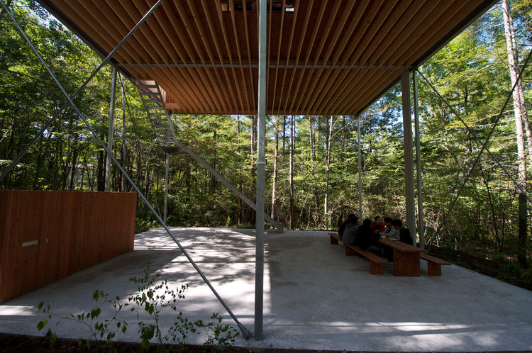 The main living space high enough for its residents to gaze above the treetops from its windows. The space below is akin to room walled by greenery.