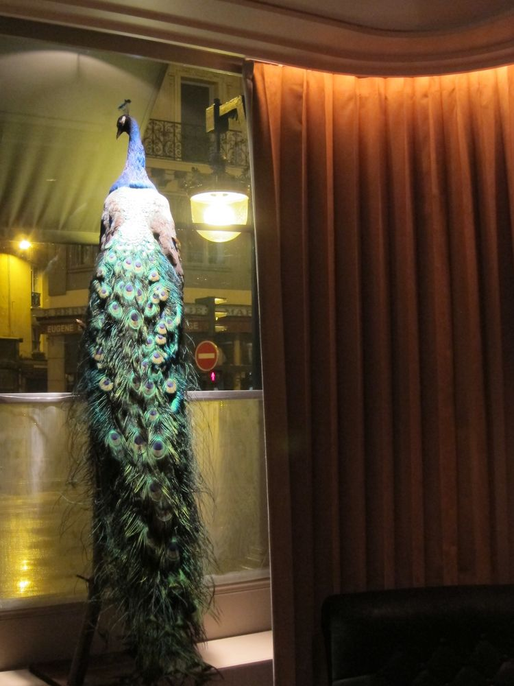 The bar off the lobby has some theatrical touches, including a wall of antique glass decanters (sourced from nearby antique shops and the main flea market), a plush velvet curtain, and this regal peacock which faces onto the street and gives both the bar