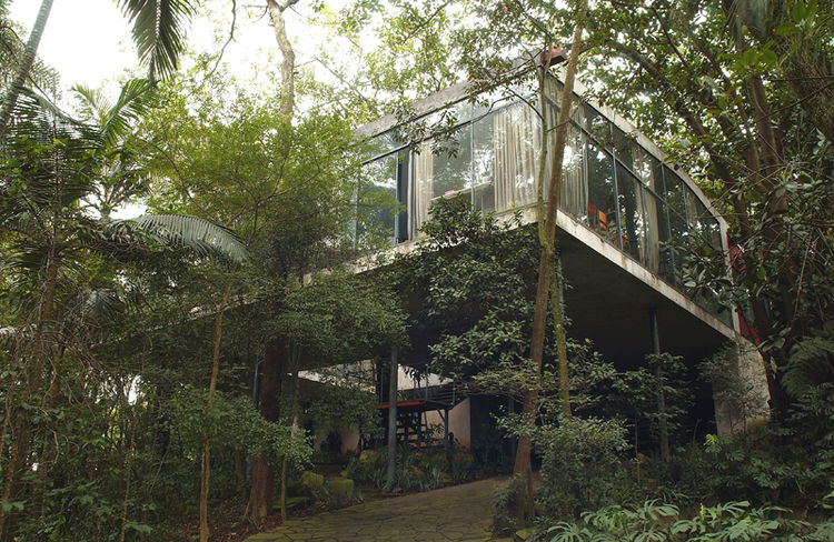 """The Glass House as it appears today, with the forest grown around it, as Bo Bardi had anticipated—she insisted that the displaced vegetation be replanted just after the house was finished. Photo courtesy <a href=""""http://espasso.com/"""">Espasso</a>."""