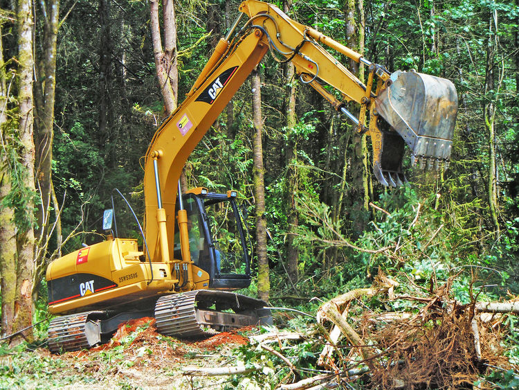 Heavy site work within forest practices areas had to be scheduled during dry months—which for the Northwest is a very limited window of opportunity. Fire safety equipment was also required to be on hand as a precautionary measure. Our initial work include