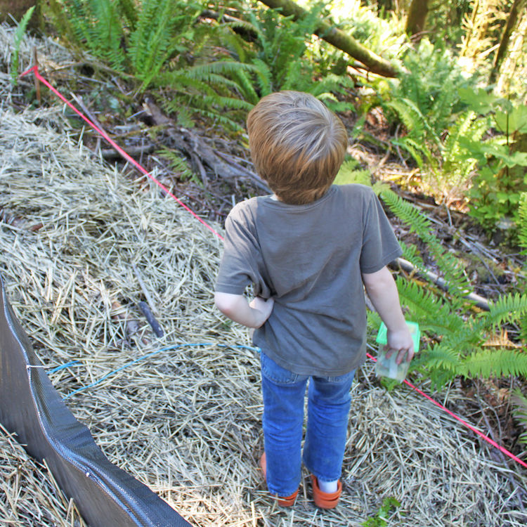 One of Jack's favorite activities has been visiting the site and collecting bugs and insects of all sorts. Here he checks out hisoptions while standing at the slope's edge.