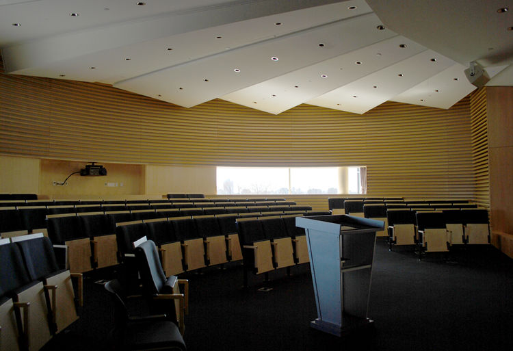 This gathering room on the sixth floor is lovingly referred to as the 'acropolis,' Its walls are clad with maple wood slats and fabric for acoustics.