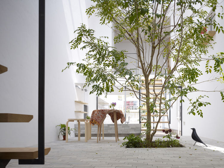 The central terrace works as a buffer between the study, atelier and bedroom and bathroom located on both sides of the central space. The project's name, Minna no Ie (Everyone's House), suggests that the house has no strict borders. The Evergreen Ash is f
