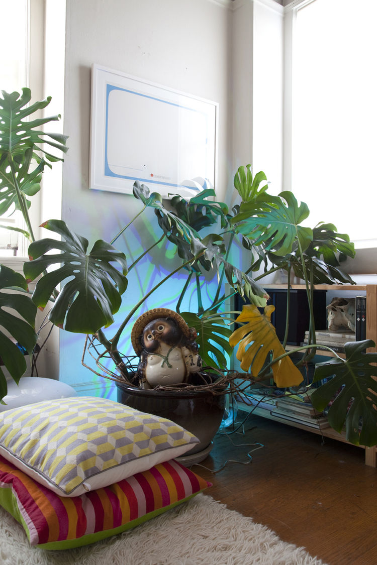 "A mixture of blue and green hues, from a <a href=""http://www.coloryourworldsweeps.com"">LivingColors</a> lamp hidden behind a large philodendron, complement a Jonah and the Whale print by Edie Harper in a corner of Grawe's living room. The floor pillows ar"
