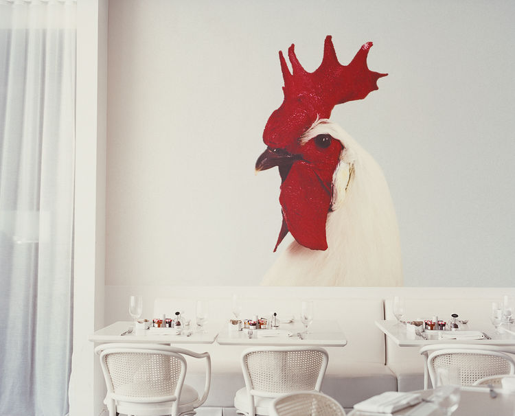 Designer Benjamin Noriega-Ortiz's Garden of Eden theme for the Mondrian Scottsdale Hotel takes the form of a giant rooster at Asia de Cuba, the hotel's savvy and sumptuous restaurant.