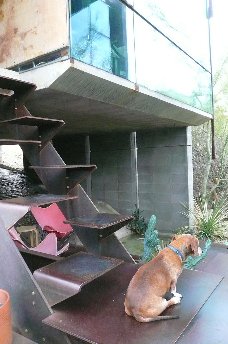 The structure is split into two units, with the kitchen and living room connected to the bedrooms by an outdoor terrace and a set of innovative but rather precarious steel stairs, shown here. Burnette's sweet and slightly senile old dog can't climb them.