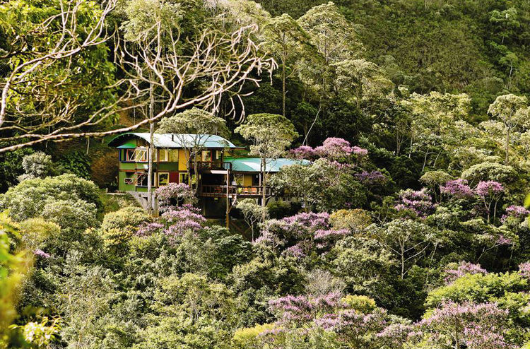 "A Rodrigues house in the Atlantic Forest of Brazil. Photo courtesy <a href=""http://espasso.com/"">Espasso</a>."