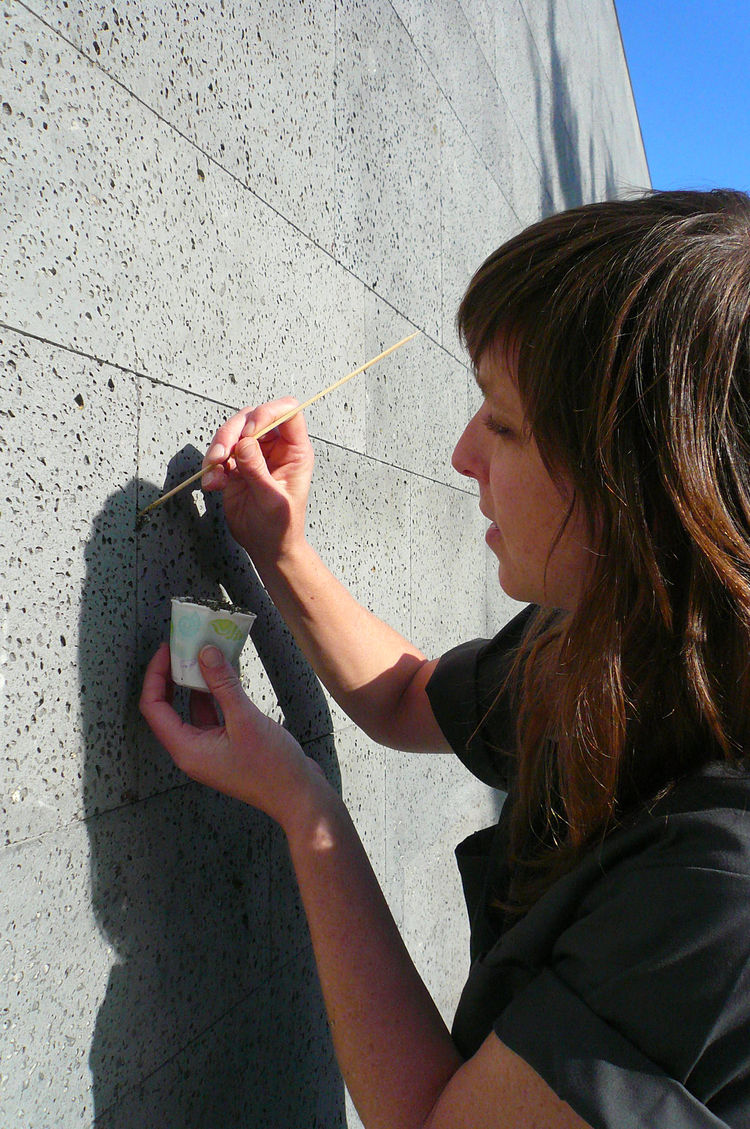 Conger and Rayna Deniord, the project architect (shown here), conceived of the organism as a primal way of introducing nature into the otherwise spare, minimalist rooftop space.