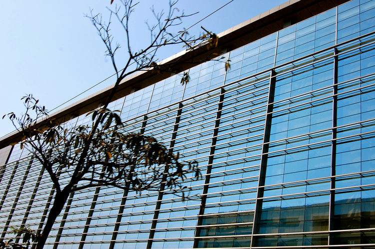 IBM's building in Pune is has a striking glass facade. New glass buildings, hotels and offices, are being built all over.