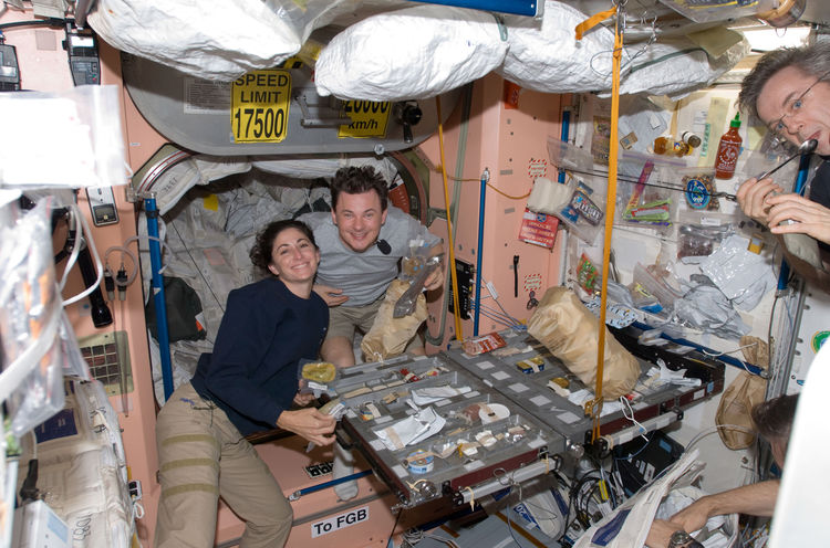 NASA astronaut Nicole Stott and Russian cosmonaut Roman Romanenko, both Expedition 20/21 flight engineers, are pictured at the galley in the Unity node of the ISS. Canadian Space Agency astronaut Robert Thirsk, Expedition 20/21 flight engineer, is mostly