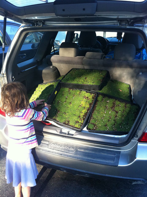 "Post 10, as mentioned before, includes a family outing to Sunset Nursery. Writes Taalman: ""Our purchases give new meaning to 'small carbon footprint' for our Subaru!"""