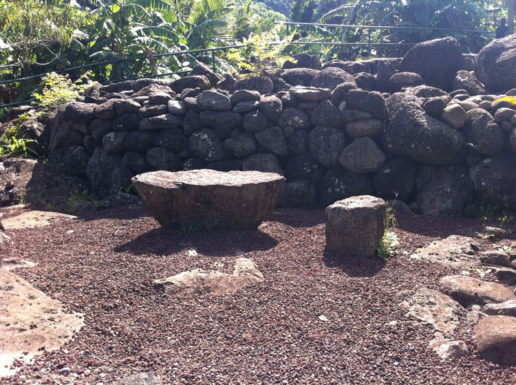 Two large sculptural lava rocks in the form of a table and chair would be great in the open area in our yard currently half-filled with the black rocks Ellwood often used as a hardscape border element.