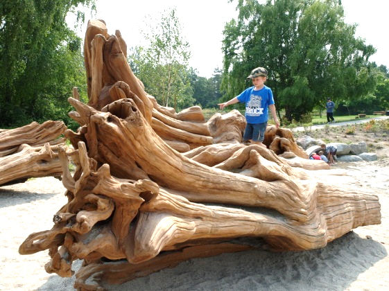 The idea of the natural playscape—creative combinations of rocks and stumps, sand and water—is a huge trend in playground design at the moment.  When applied carefully these can reduce construction costs, and the ideas are equally accessible (though on a