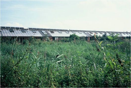 Not nearly as well known, but no less impressive, the Hockerton Housing Project in north-central England is a five home rural community self-developed by five families. Completely passive solar (at the same latitude as Edmonton!), Hockerton is a net energ