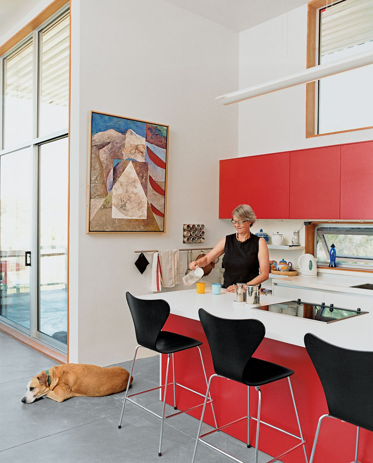 Ginge's penchant for the bright red Varenna cabinets the couple splurged on is matched only by her love of animals; rescue pets are de rigueur around the house.