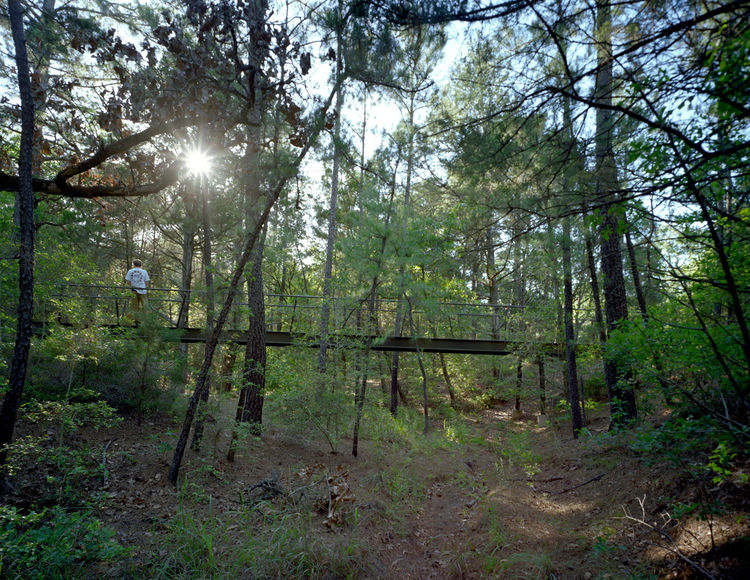 Near the bunkhouse, Panton built a wood-and-steel footbridge spanning 90 feet across another dry creek leading to the path to a swimming pool and outdoor bathhouse.