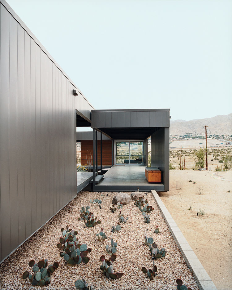 Ocotillo was placed in key areas as a great structural focal point.