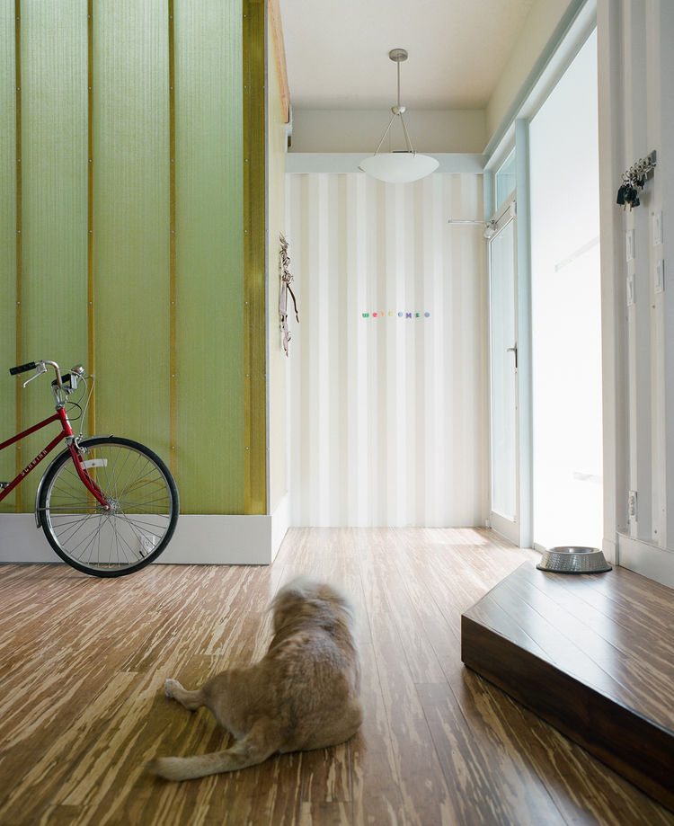 "Entering the house by the front door (right), the first view one gets before turning left and entering the main living area--where the couple's dog Ruti likes to lounge--is of the color-shifting fiberglass light wall. ""Whenever possible, I like to open up"