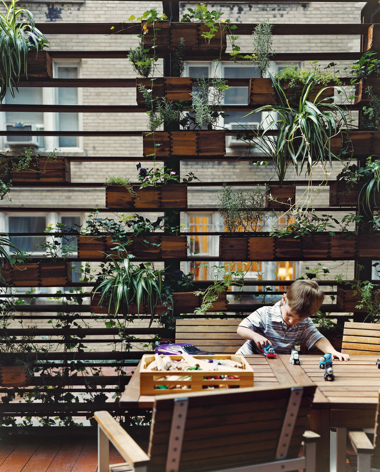 The Zizmors' son plays in front of a living wall created by urban landscaper Kari Elwell Katzander of Mingo Design.