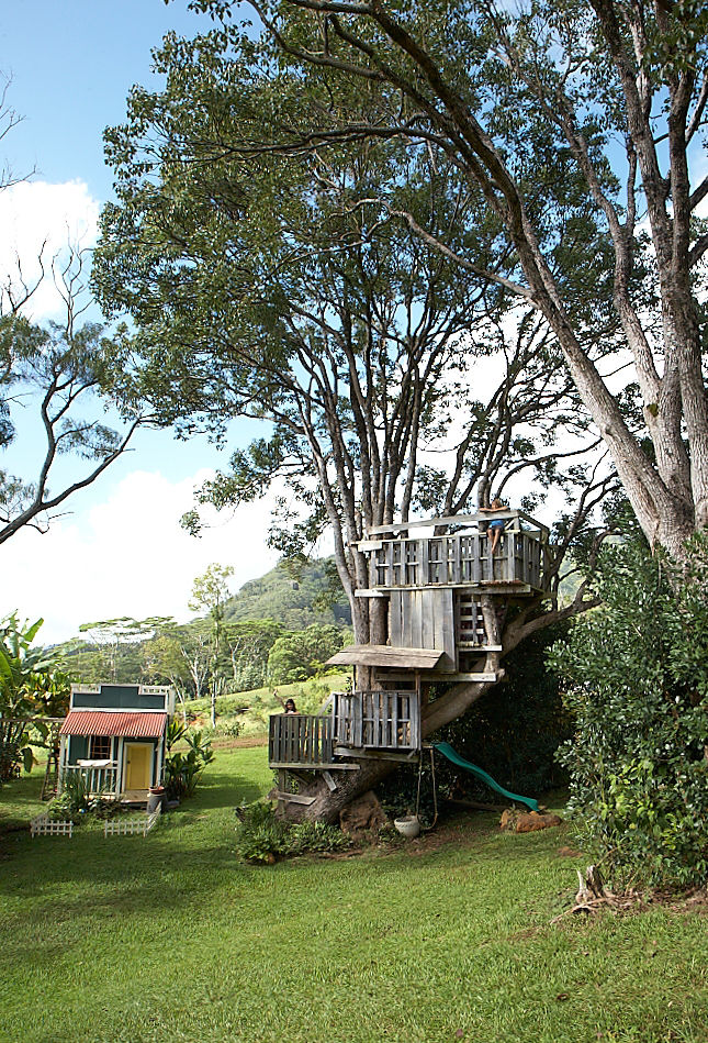 Multi-floor treehouse in Hawaii