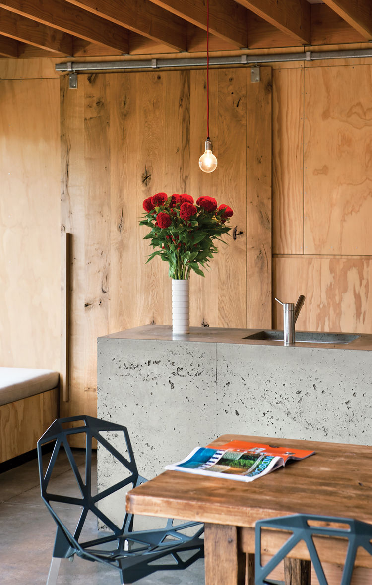 Concrete kitchen countertop and wood walls