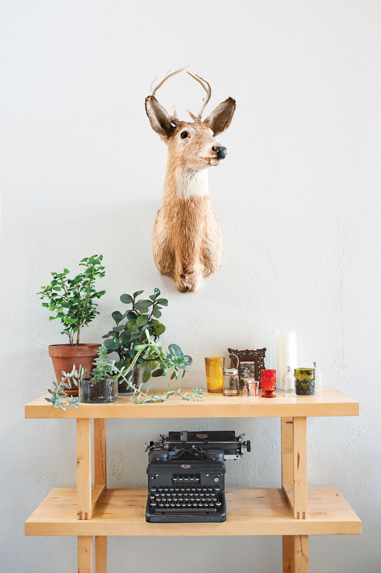 Living room with steel case desk and succulents