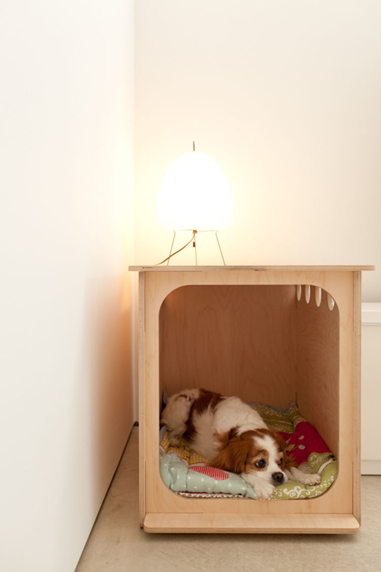 Modern wooden doghouse