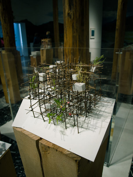 Home-for-All model by Toyo Ito