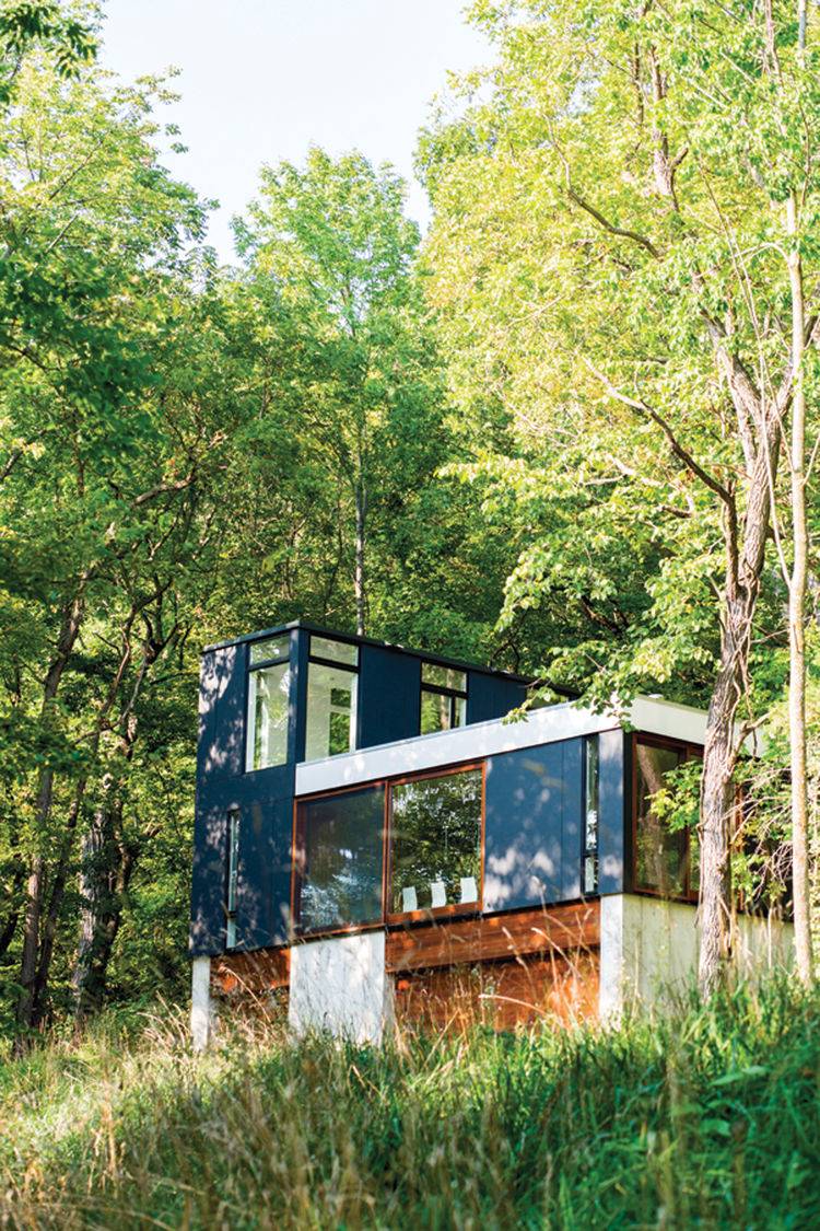 Minimalist cabin with blue facade