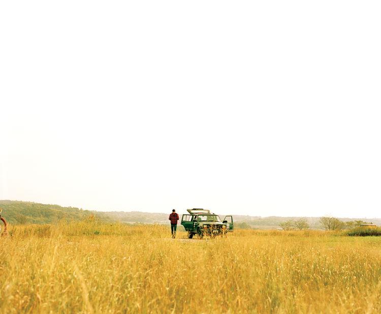 Freshkills meadow in Staten Island