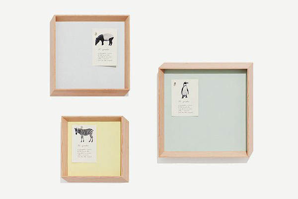 Birch picture frames