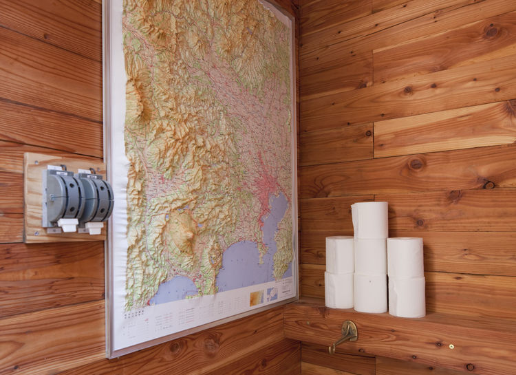 Bathroom with wood walls and raised topographic map