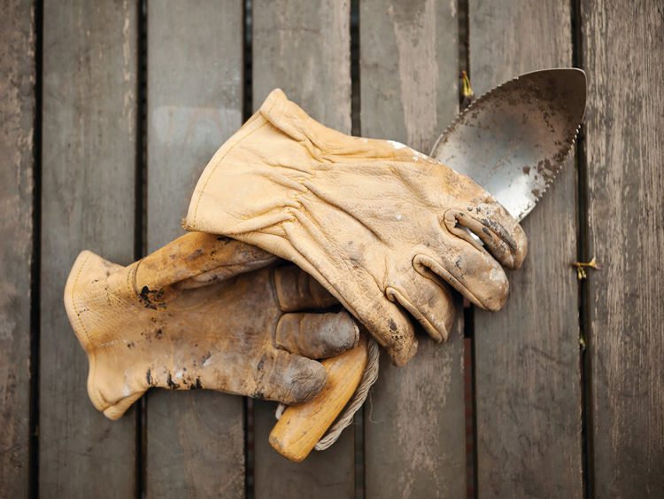 Gardening trowel and gloves