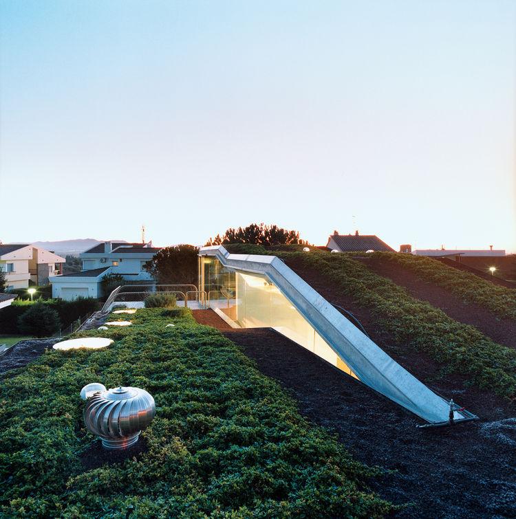 Modern hydroponic rooftop garden