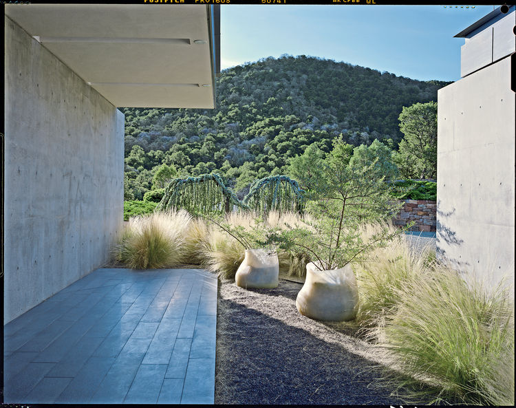 "The landscape Hayes conceived for a private garden in Santa Fe, New Mexico, exploits the desert landscape with drought-tolerant planting. ""Walking in the Santa Fe hills is psychedelic. It's a desert, and there's all this rock and lichen. The people who li"