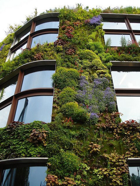 Musée du quai Branly living wall