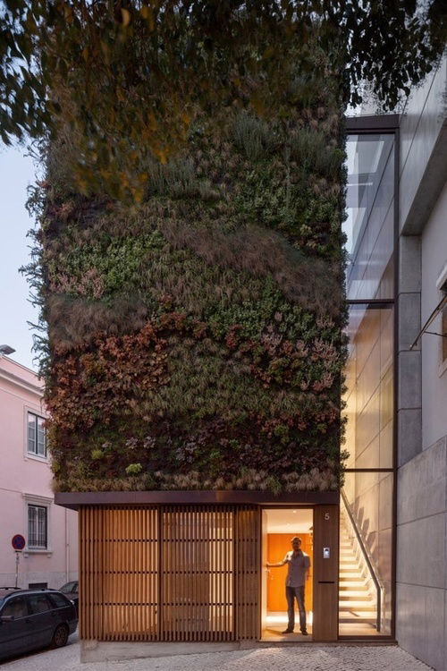 Living wall facade in Lisbon Portugal