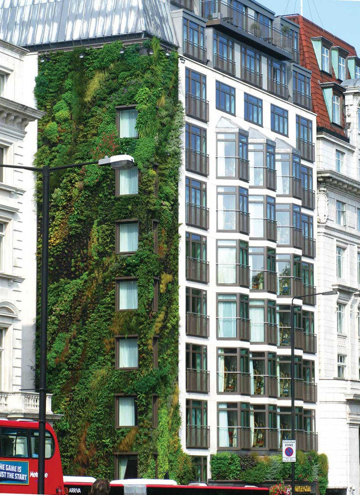 Athenaeum Hotel London living wall