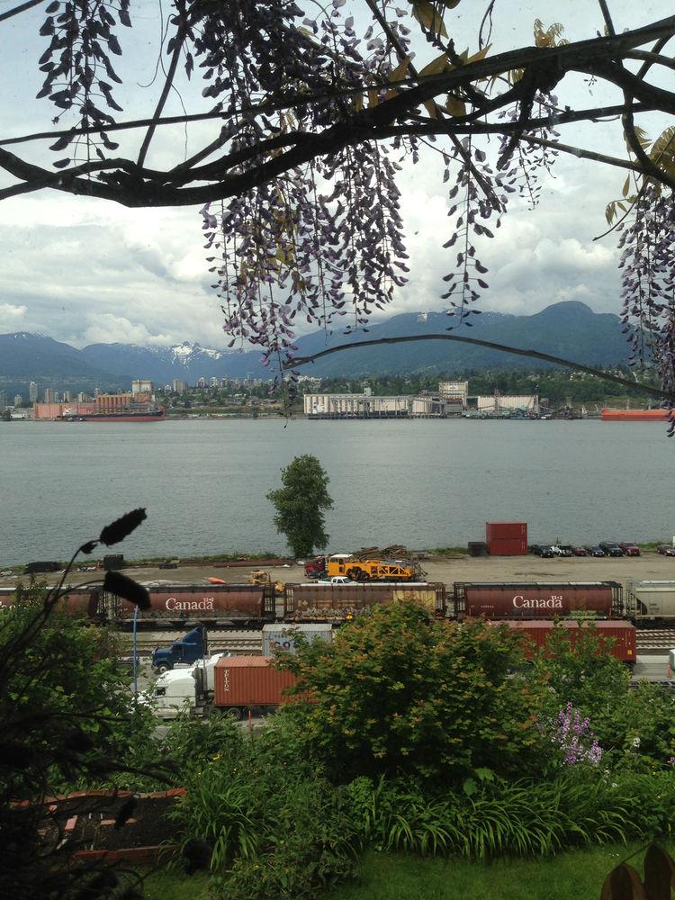 Backyard, Vancouver, Omer Arbel