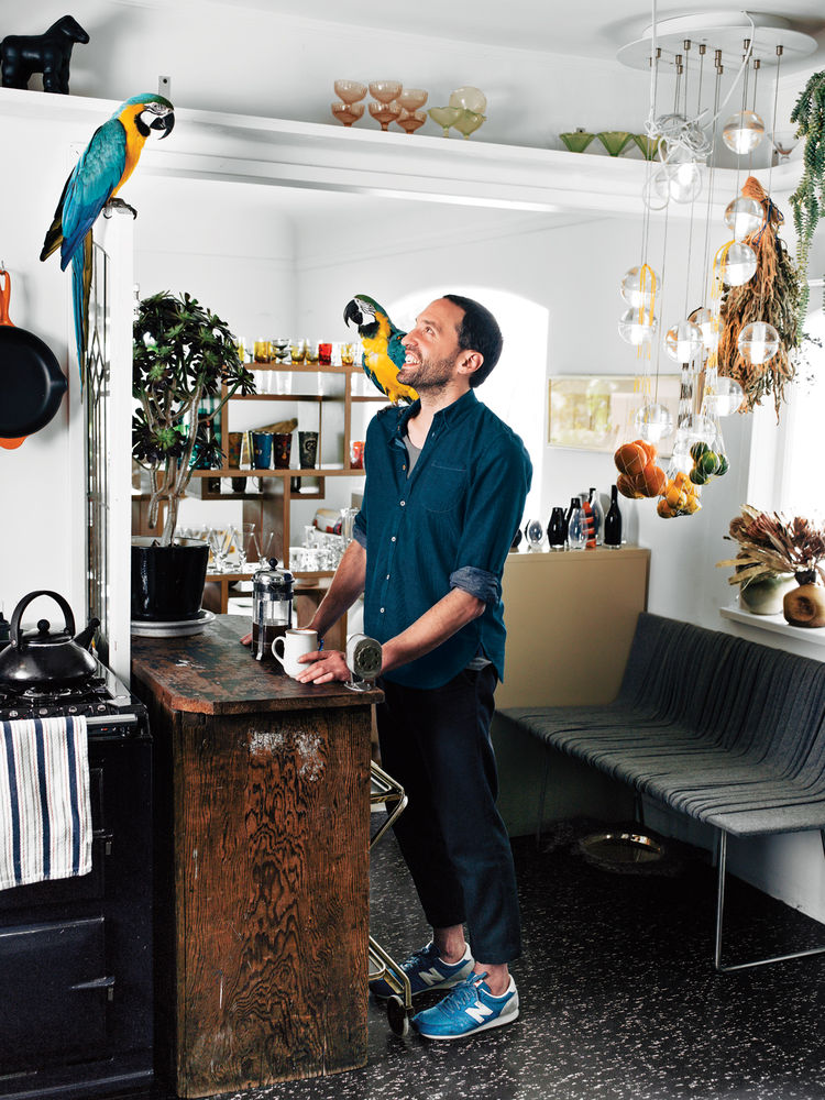 Designer Omer Arbel in his kitchen with parrots