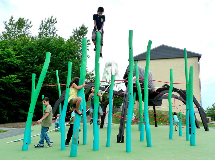 The Giant Spider and the Mushrooms playground