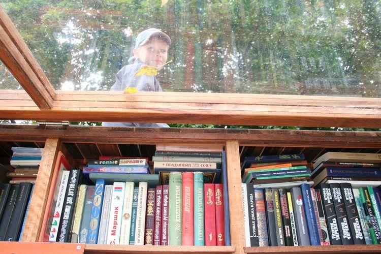 bookshelf, wood, glass, child