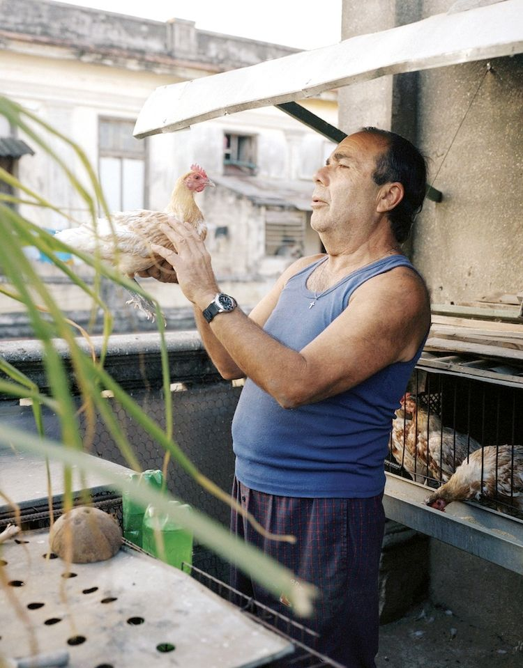 Farming Cuba: Nelson, a Cuban Farmer